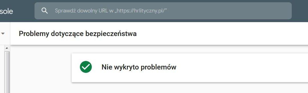 Problemy dotyczące bezpieczeństwa w Google Search Console
